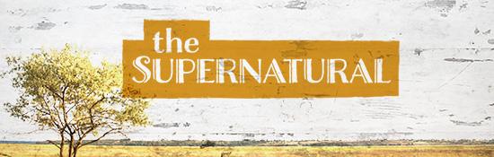Store-Call-TheSupernatural