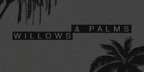 Blog-WillowsAndPalms