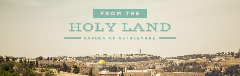Question-Gethsemane