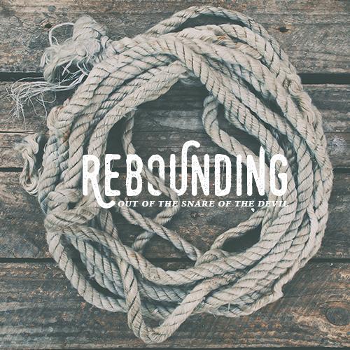 Product-ReboundingSnare